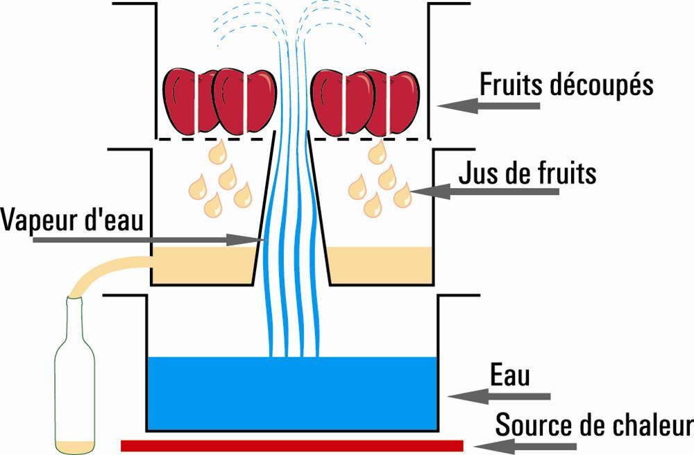 Extracteur de jus vapeur 26 cm induction tom press - Extracteur de jus en solde ...