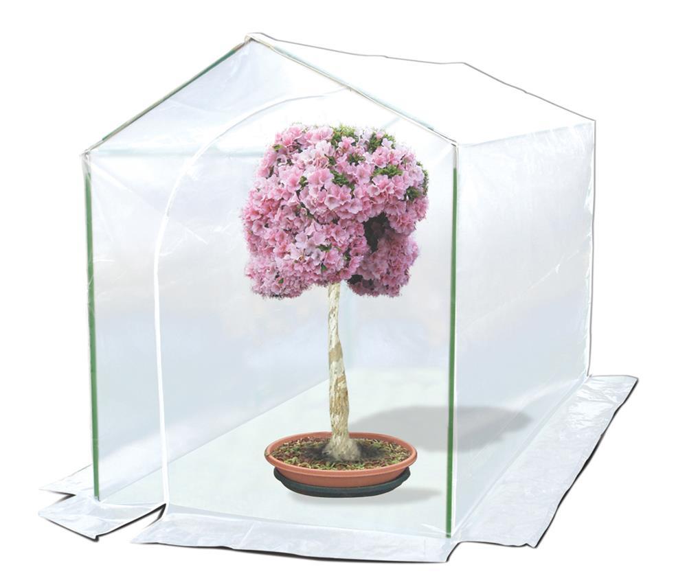 Les mini-serres de jardin : conseils et utilisation - Tom Press