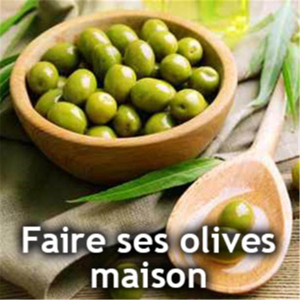 faire ses olives vertes 224 la maison tom press
