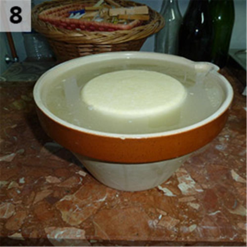 comment faire du fromage et de la tomme maison tom press